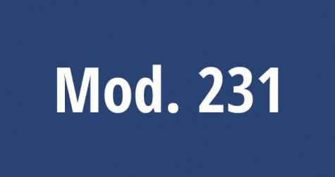 Modello 231